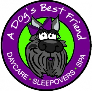 A Dog S Best Friend Vancouver Wa